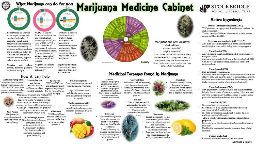 what-marijuana-can-do-for-you-3